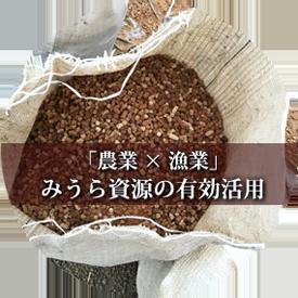 めぐみマグロ肥料