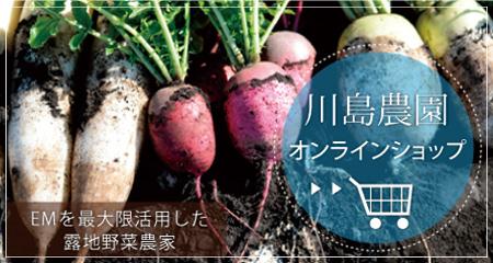 川島農園オンラインショップ