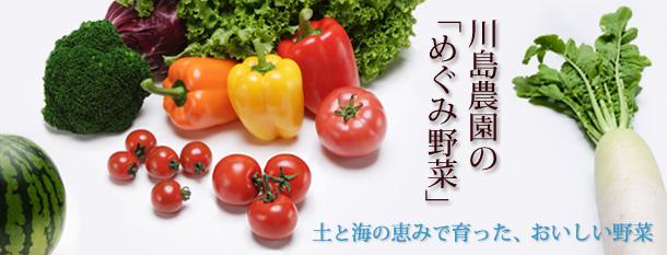 川島農園のめぐみ野菜