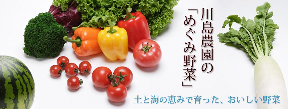 めぐみ野菜