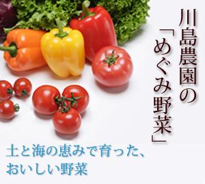 川島農園めぐみ野菜