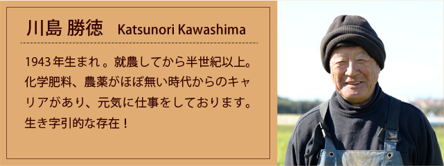 prof_k_katsunori