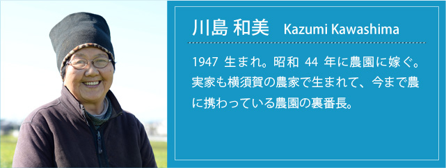 prof_k_kazumi