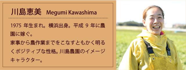 prof_k_megumi